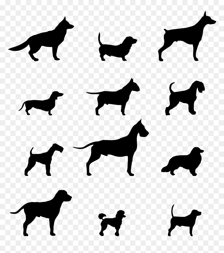 Dog On Motorcycle Clipart Png Transparent Library Pin Silhouette Chien Png Png Download Vhv