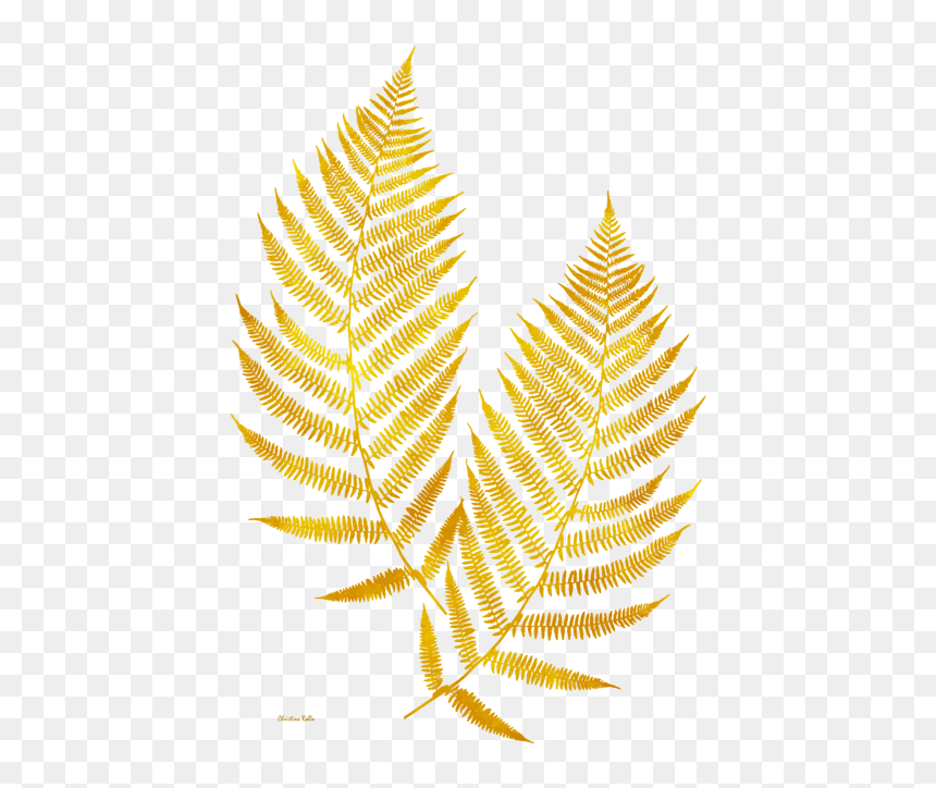 Gold Leaves Transparent Background Hd Png Download Vhv