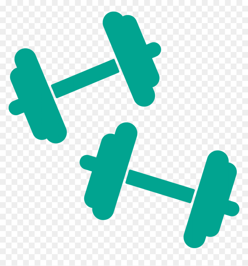 27 Fitness Clipart Gym Equipment Free Clip Art Stock Weights Clipart Hd Png Download Vhv
