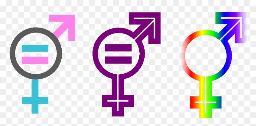 transparent gender icon png gender equality symbol transparent png download vhv gender equality symbol transparent png
