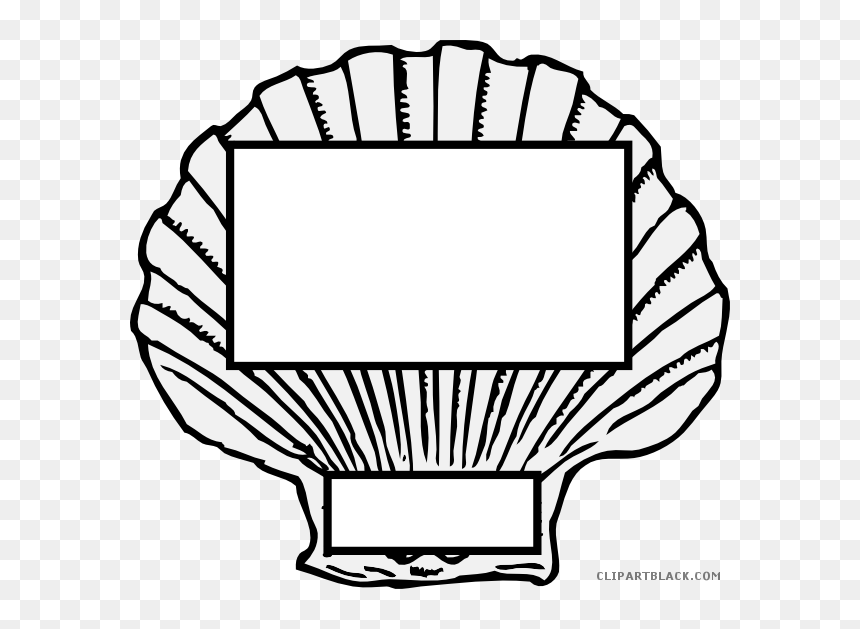 Free clipart seashell, Free seashell Transparent FREE for download on  WebStockReview 2020