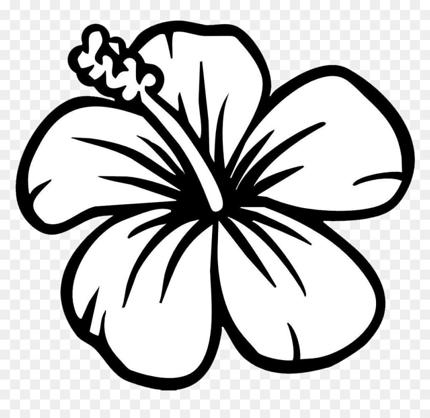 Black And White Flower Clipart Hibiscus Flower Coloring Page Hd Png Download Vhv