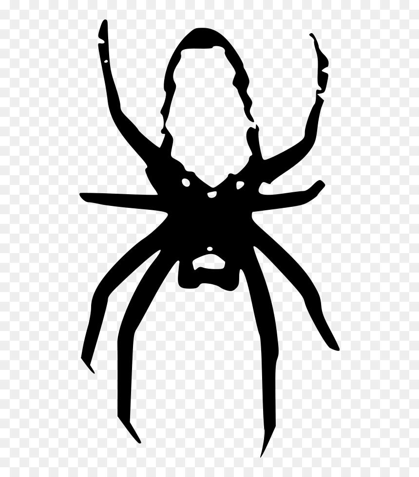 Spider Medium 600pixel Clipart Vector Clip Art Gambar Laba Laba Kartun Hitam Putih Hd Png Download Vhv