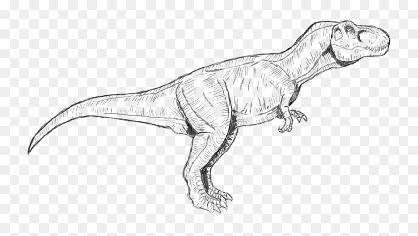 Jurassic Park T Rex Coloring Pages To Print Jurassic World T Rex Coloring Page Hd Png Download Vhv