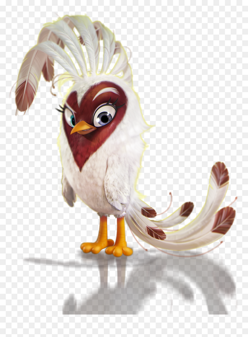 Angry Birds Wiki Turkey Hd Png Download Vhv