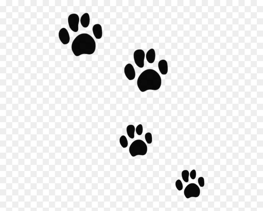 Paw Print Png Cat – It's high quality and easy to use.