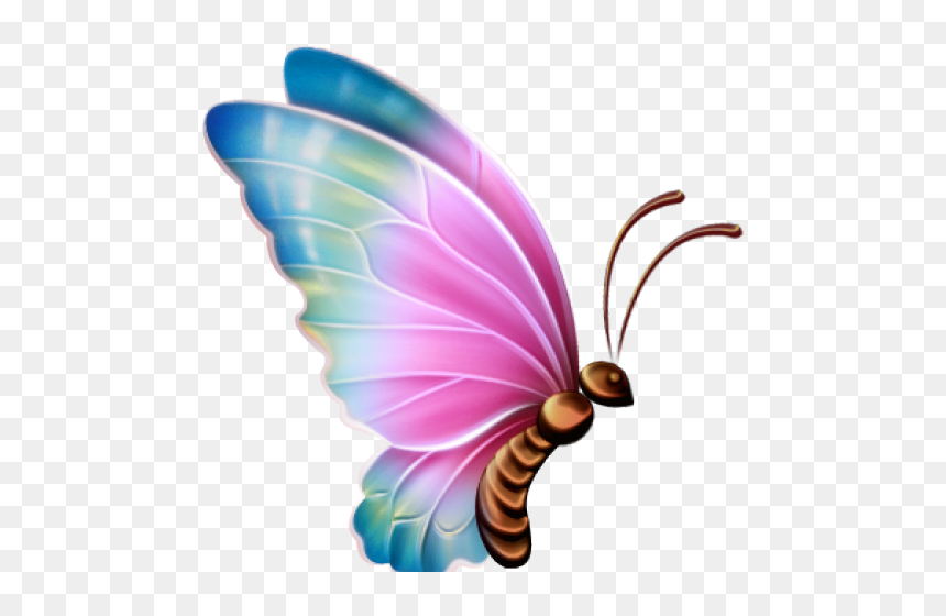 Download Butterflies Swarm Png Clipart - Flock , Free Transparent Clipart -  ClipartKey