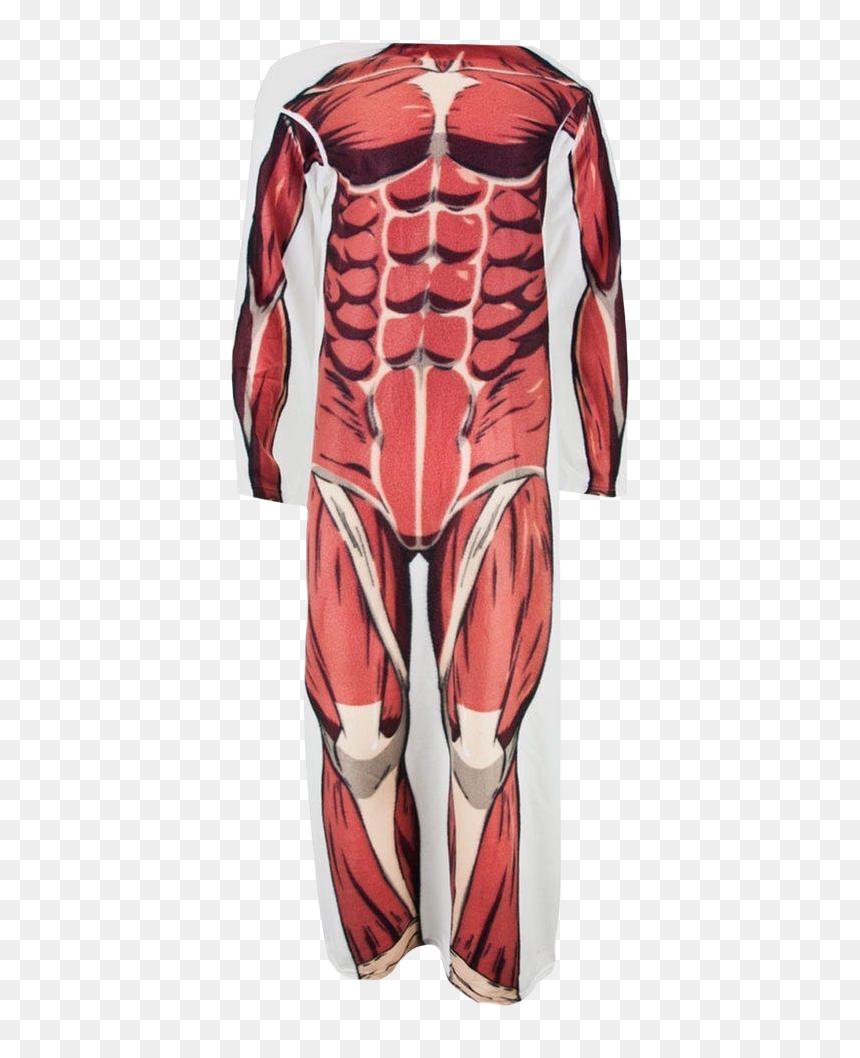 Colossal Titan Snuggler Blanket Colossal Titan Png Transparent Png Vhv