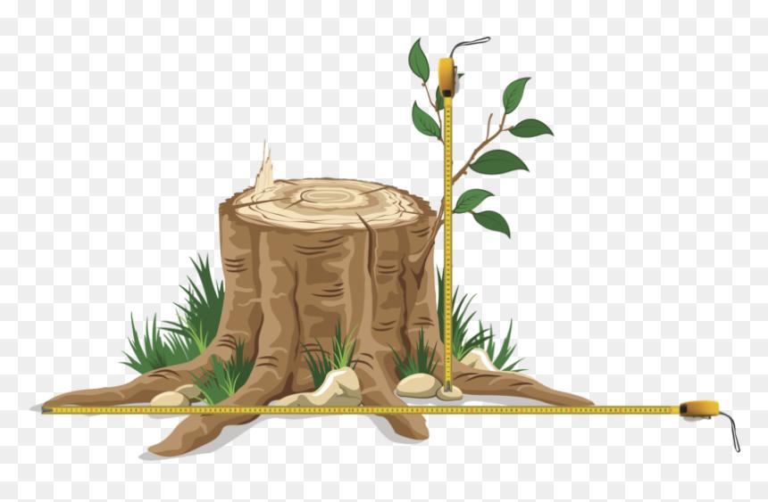 Cut Down Tree Png Transparent Png Vhv
