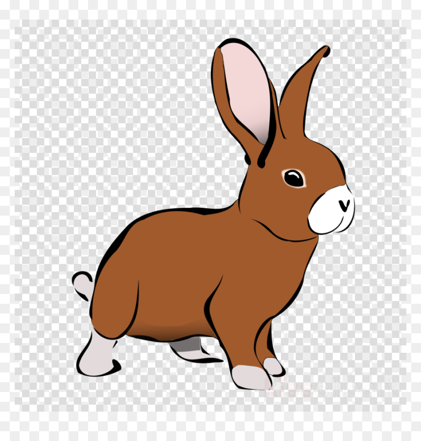 Chat Icon Transparent Background Hd Png Download Vhv