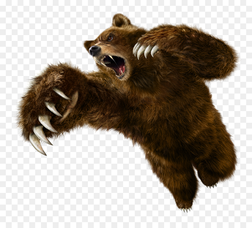 Tekken 6 Kuma Hd Png Download Vhv