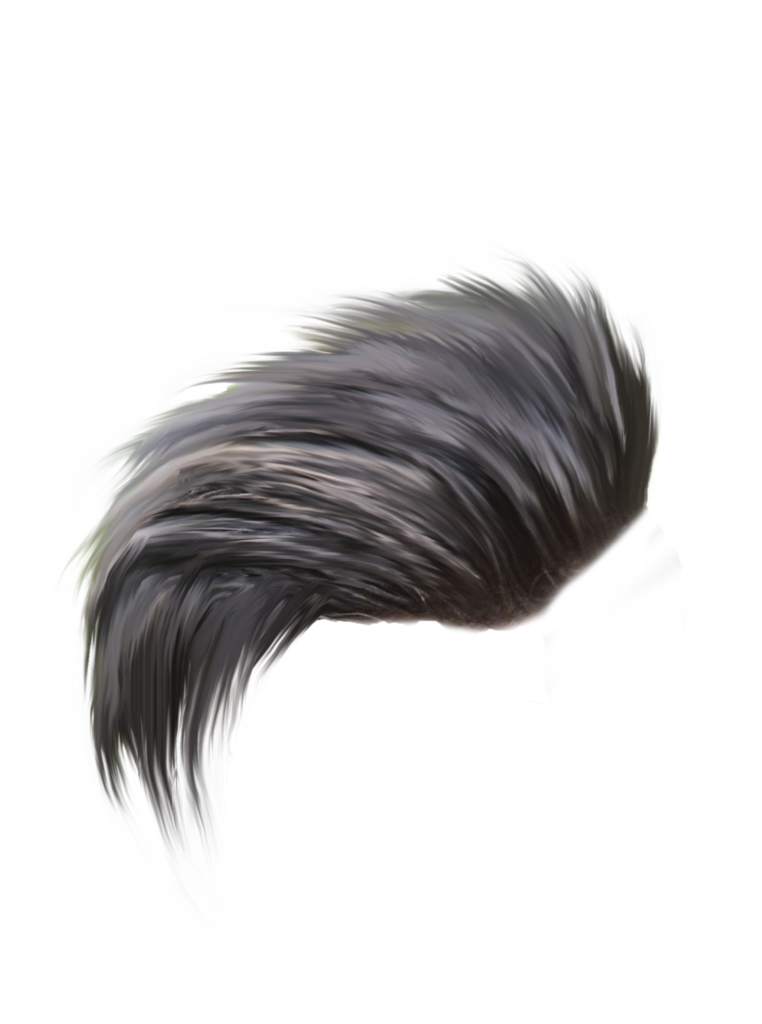 Hair Png Hd Png Pictures Vhv Rs