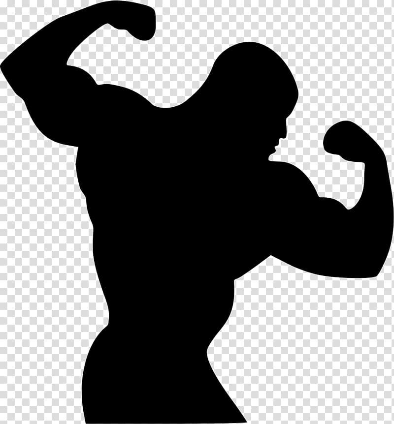 Roblox Muscles Png Muscle Png Hd Png Pictures Vhv Rs