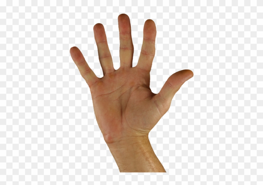 Open Hand Png Hd Png Pictures Vhv Rs You can now download for free this hands open receiving transparent png image. open hand png hd png pictures